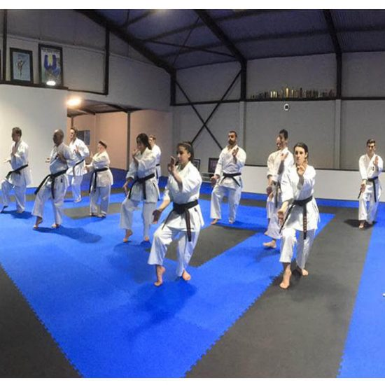Black Belts-Sempais kata training
